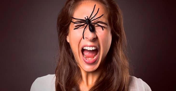 Страх пауков