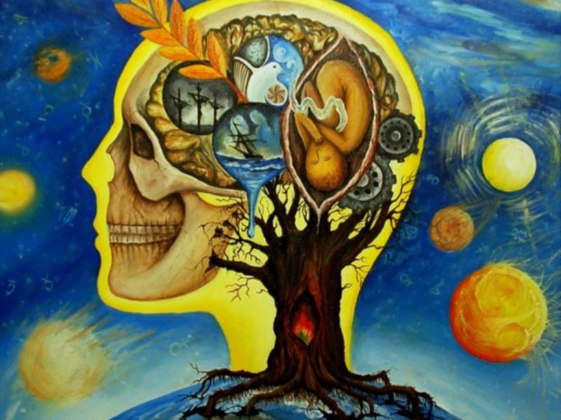 Взгляд на мир через чувства
