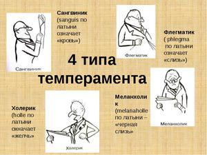 Характеристика типов темперамента