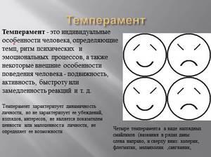 Основные типы темперамента